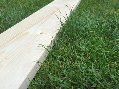 Rasen glätten ohne Walze