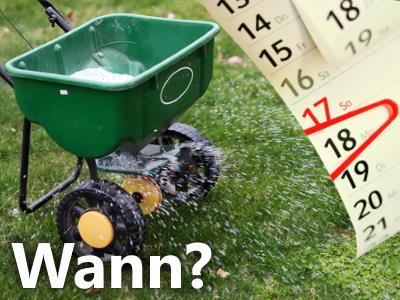 Wann Rasen düngen