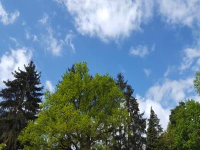 Wetter zum Rasen aerifizieren