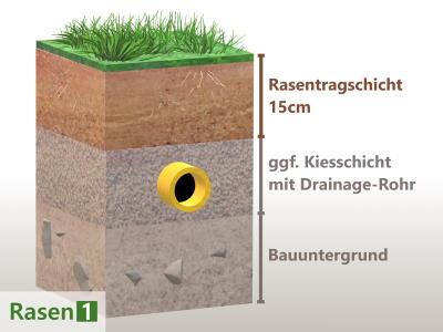 Rasen Bodenaufbau
