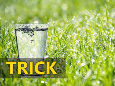 Glas Rasen bewässern