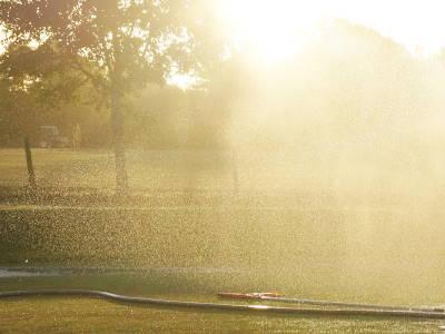 Rasen wässern bei Sonne